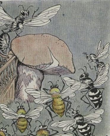 THE BEES AND WASPS, AND THE HORNET