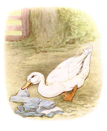 Mr. Drake Puddle-Duck advanced in a slow sideways manner, and picked up the various articles.