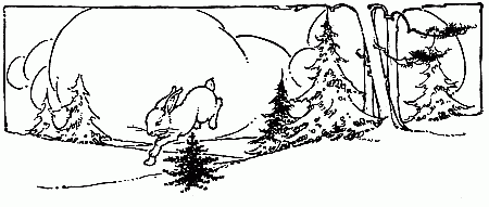 Rabbit jumping over fir tree