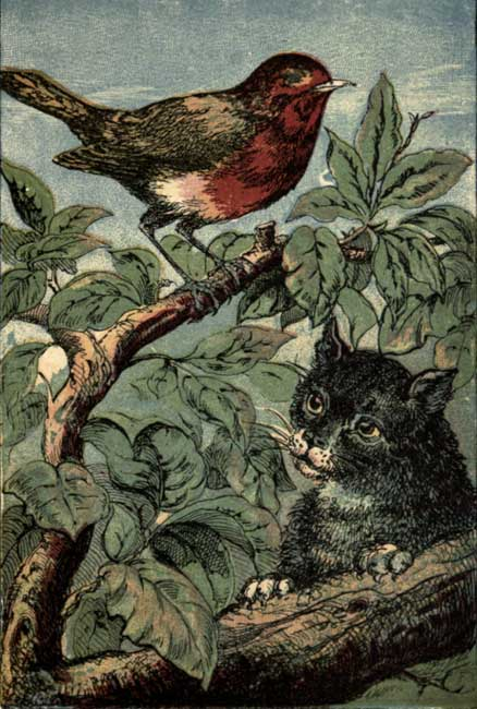 Little Robin Redbreast and Pussy-Cat