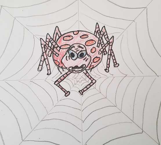 Nervous spider in web