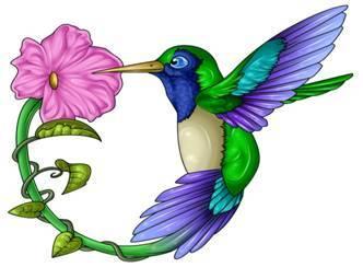 Hummingbird and a flower