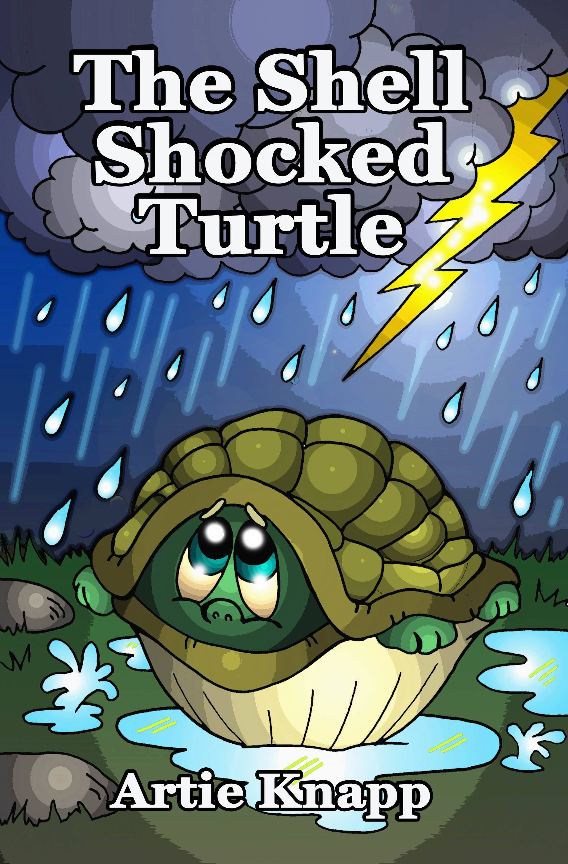 The Shell Shocked Turtle