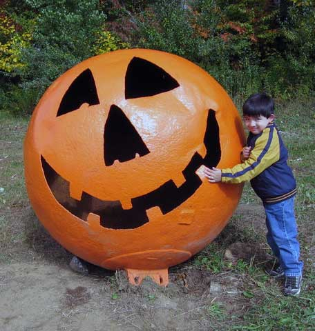 Large pumpkin with boy holding