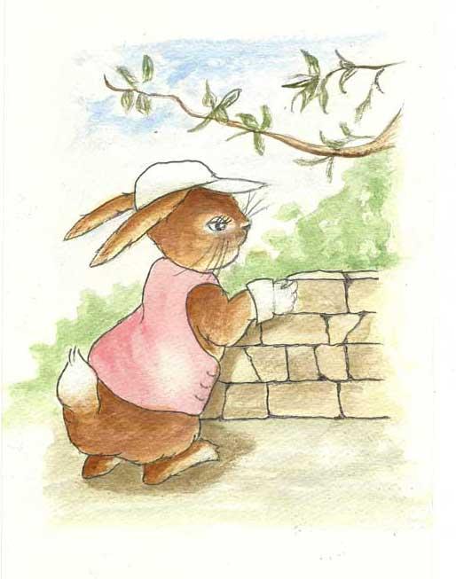 Molly the Waller - rabbit building a wall
