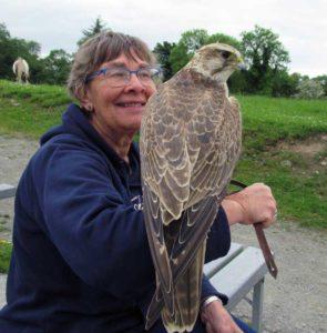 Julia Archer Author Photo - holding an eagle on her arm