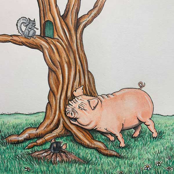 Piggy scratching against tree