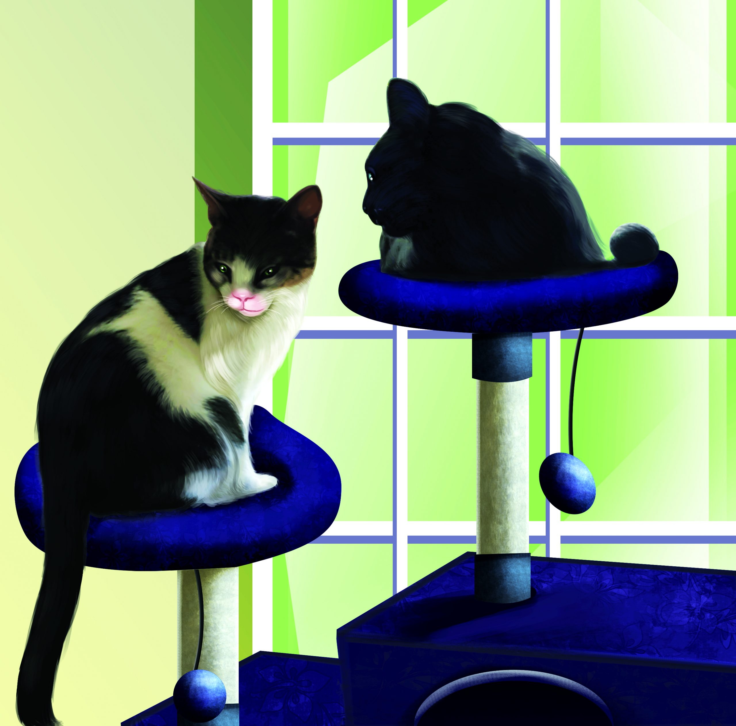 cats on tables